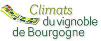 "The ""climats"" of the Burgundy Wine Region submitted for World Heritage status"