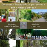 Competition for protecting tree-lined avenues