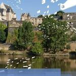 Gardens in the Loire Valley: summer highlights